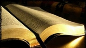 s560x316_biblia