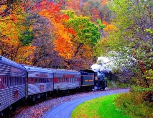 trenul vieții