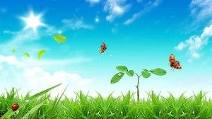 beautiful-life-hd-hd-wallpapers_beautiful-life